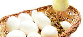 Huevos: El bienestar animal impone una reconversión