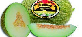 Agroponiente lanza el primer melón catalogado por su índice de azúcar