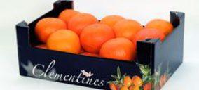 Smurfit Kappa presenta un envase pitufo de cartón ondulado para el sector frutícola