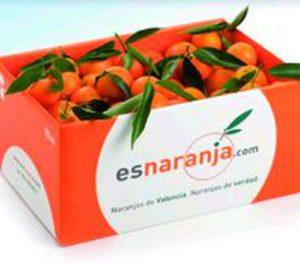 Nace esnaranja.com para la venta de cítricos a través de Internet