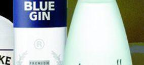 Central Hisumer se refuerza en ginebras