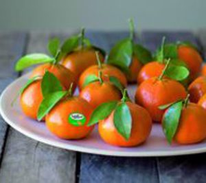 Sanlucar Fruit adquiere los derechos de venta exclusiva de ClemenGold