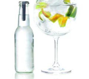 Destilados y mixers premium: El dominio del gin tonic