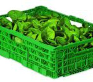 Vegetales Línea Verde firma un acuerdo con IFCO Systems