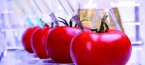 Ingredientes alimentarios: Menos y más naturales