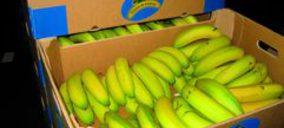 Smurfit Kappa desarrolla un nuevo embalaje para el sector del plátano