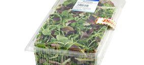 Nuevo envase para los Brotes Tiernos Foodservice Dimmidisí en foodservice