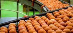 El grupo Huevos Guillén sumará una nueva planta este año