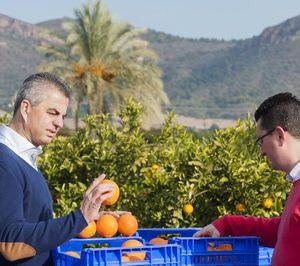 Sanlucar Fruit continúa creciendo a doble dígito