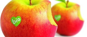 Informe 2014 del mercado de alimentación ecológica