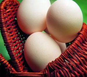 Informe 2014 del sector de huevos