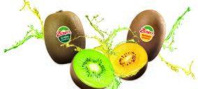Zespri lanza su nueva variedad de kiwi 'SunGold' tras diez años de investigación