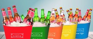 Informe de Cadenas de Cervecerías y Tabernas en España 2014
