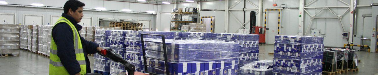 Informe 2015 del mercado de logística y grupaje frigoríficos