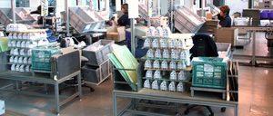 Informe 2015 del sector de logística para electrodomésticos