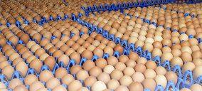 Avícola Barco invertirá 2 M€ para aumentar su producción