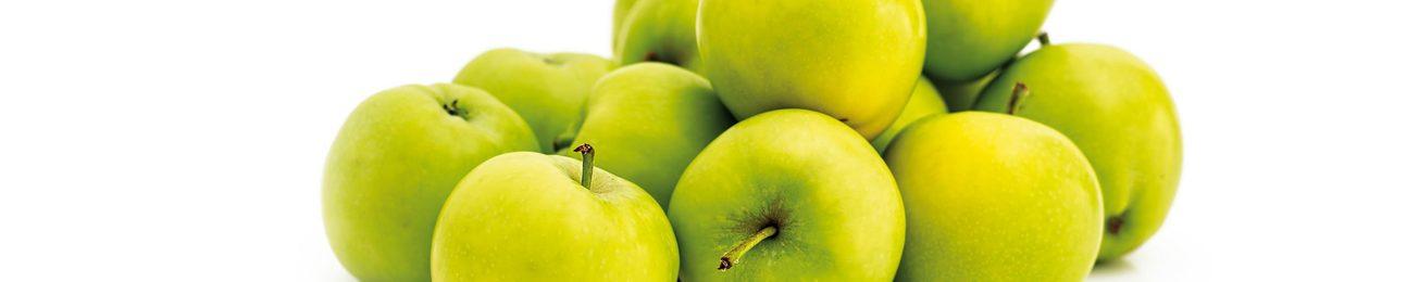 Informe 2016 del sector de manzana