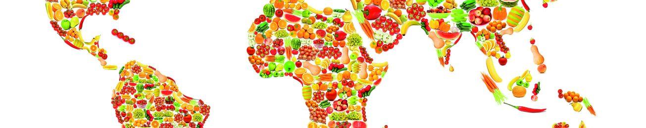 Informe 2016 sobre la exportación de frutas y hortalizas
