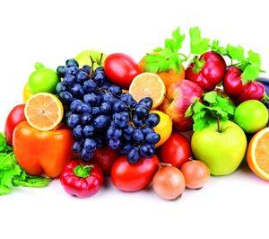 La exportación de frutas y hortalizas continúa al alza