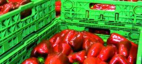 El transporte hortofrutícola bate récords en 2015