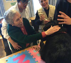 Amma incorpora terapia con animales en otras dos residencias