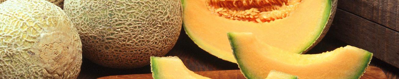 Informe 2016 del sector de melón y sandía en España