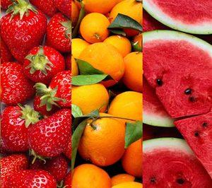Fruitbull renueva su plataforma digital