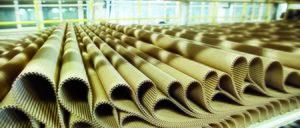 Informe 2016 del sector de Envases de Cartón Ondulado