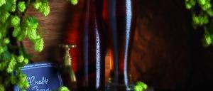 Informe 2016 del segmento de cervezas artesanas
