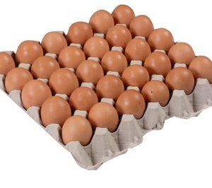 La distribución volverá a impulsar a Avícola Tratante