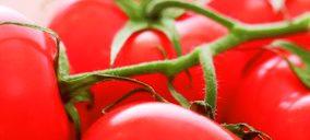 Una importante hortofrutícola levantina inicia la tramitación de un ERE