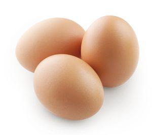 Huevos León proyecta una granja y un centro de clasificación