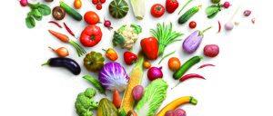 Informe 2017 sobre la Exportación de frutas y hortalizas
