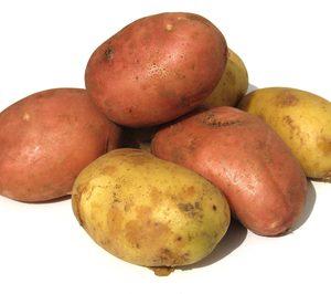 Intersur constituye una sociedad mixta en Argelia para producir patata nueva