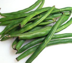 Agroatlas invierte en judía redonda