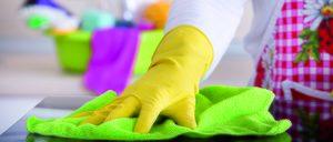 Informe 2017 del sector de Limpieza en España