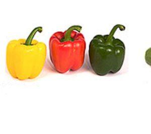 Hortofrutícola Mabe afronta una inversión de 13 M€ creciendo a doble dígito