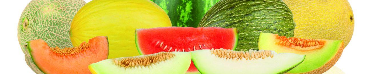Informe 2017 del sector de sandía y melón en España