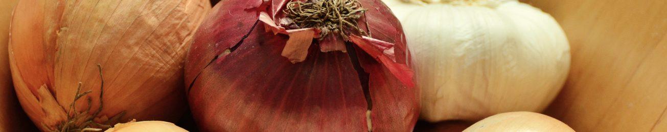 Informe 2017 del mercado de ajo y cebolla en España