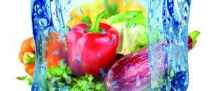 Informe 2017 del sector de vegetales congelados