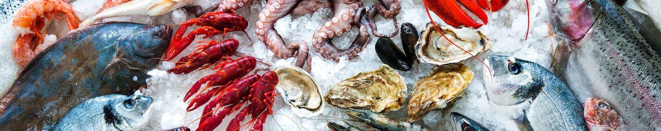 Informe 2017 del sector de productos del mar congelados