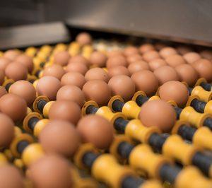 Los productores de huevos se anticipan a la demanda cage free con importantes inversiones