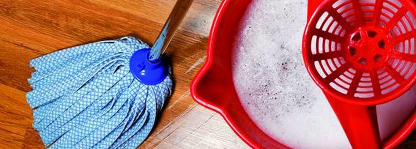 Informe 2017 sobre el sector de Limpiadores en España