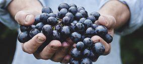 SanLucar Fruit apuesta por el mercado asiático
