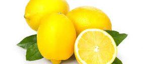 Frutas Condiso, nueva socia de Anecoop