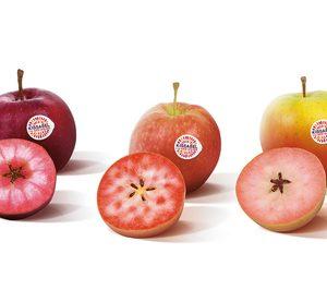 Ifored llama Kissabel a sus manzanas de pulpa de color