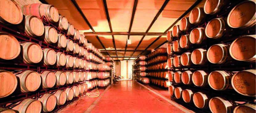 Dcoop y Pompeian comprarán empresas y marcas para afianzar su liderazgo en aceite de oliva