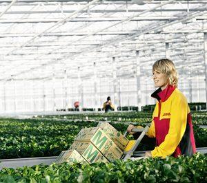 DHL Supply Chain extiende la cobertura de su división hortofrutícola Grupag