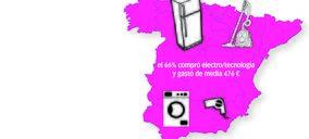 ¿Qué españoles compraron más electrodomésticos y de qué familias?