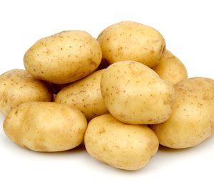 Integral Potato avanza en su plan de viabilidad para salir del concurso